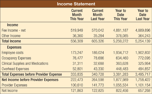 A Sample Income Statement (not From A Real Practice) Provided By The Author.  Monthly Financial Report Sample