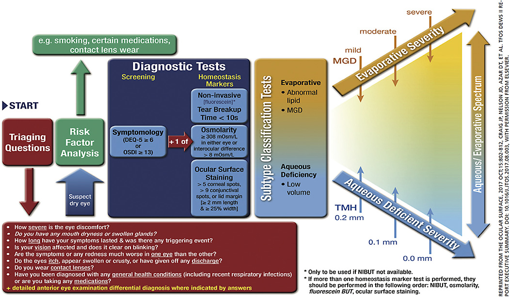 Figure 2: TFOS DEWS II Report Executive Summary. Recommended diagnostic approach for DED.